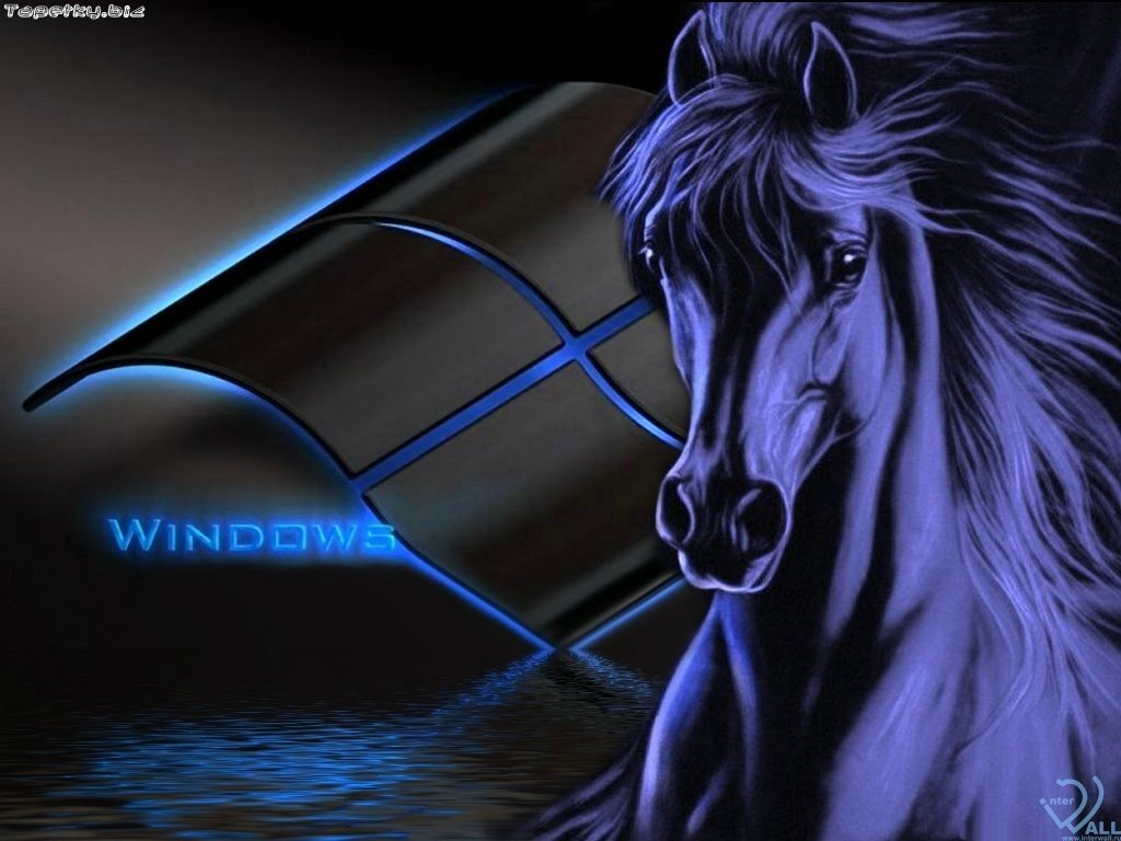 Tapety na plochu pc mirda52 for Window horses